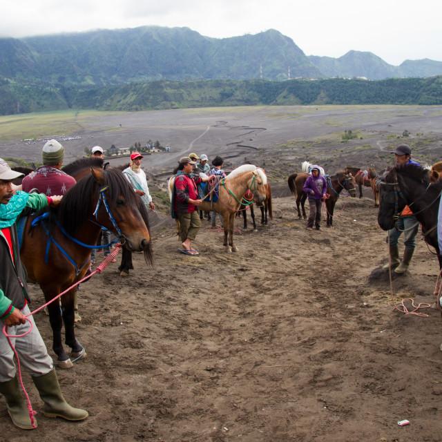 """Horseman on the banks of Mount Bromo volcano, Eastern Java, Indonesia"" stock image"