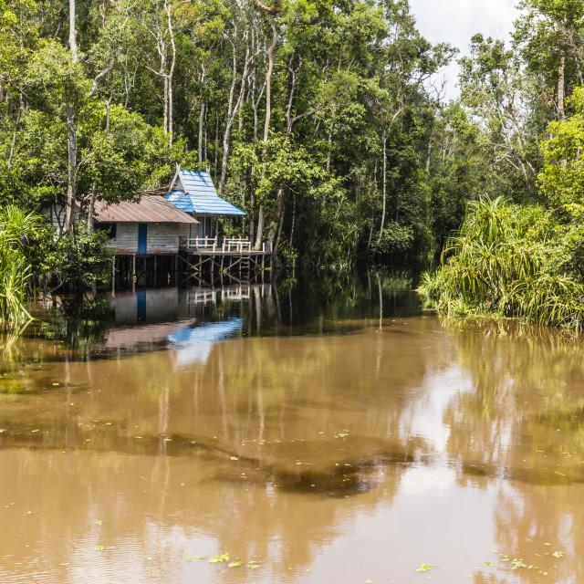 """Ranger shack on the Sekonyer River, Tanjung Puting National Park, Borneo,..."" stock image"
