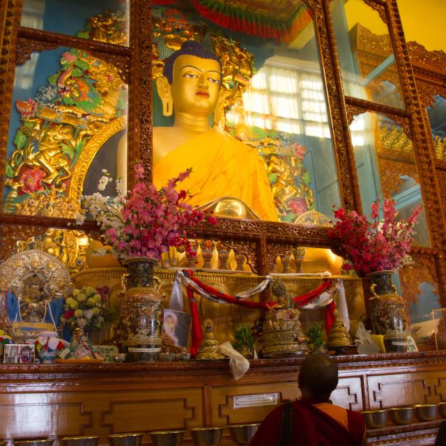 """""""Buddha of the Karmapa temple, the Gyuto Tantric Monastery, Dharamsala, India"""" stock image"""