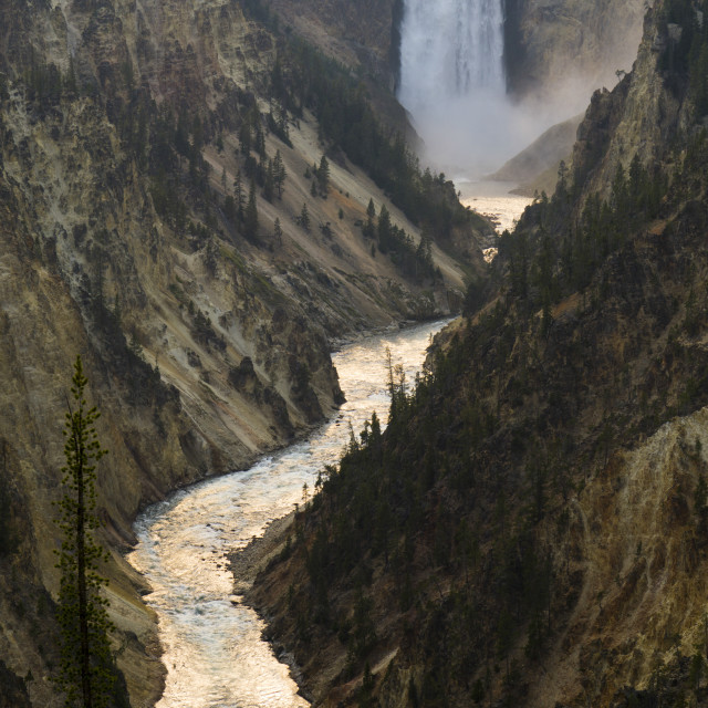 """""""Yellowstone National park, and Yellowstone river river and falls"""" stock image"""