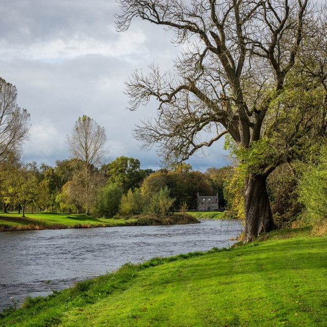 """River Tweed Near Dryburgh"" stock image"