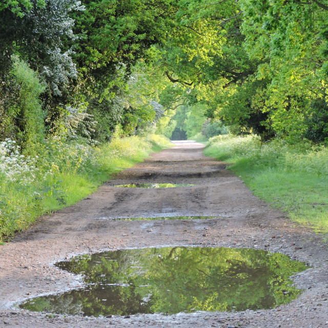 """May Morning Green Lane Suffolk Ancient Byway"" stock image"