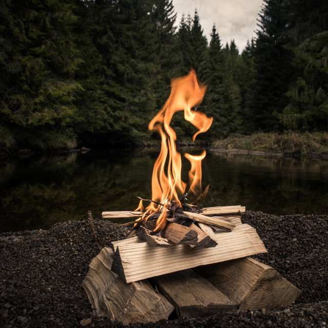 """Campfire in the woods"" stock image"