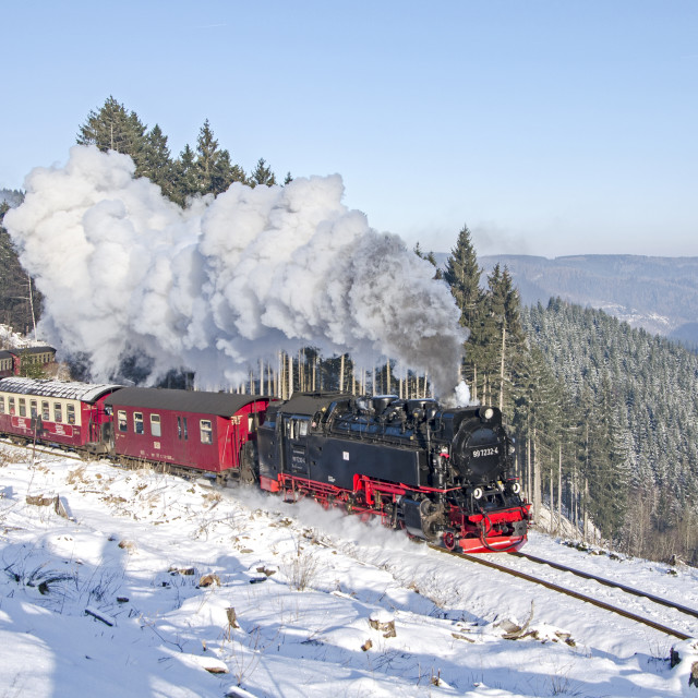 """""""Steam in the Harz"""" stock image"""