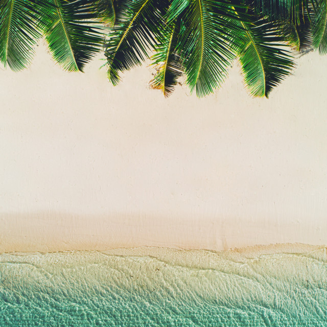 """""""Summer holiday on tropical island. Palm trees and sea waves"""" stock image"""