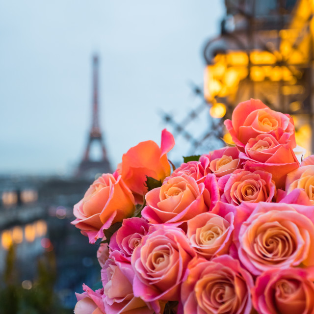 """Flowers in Paris"" stock image"