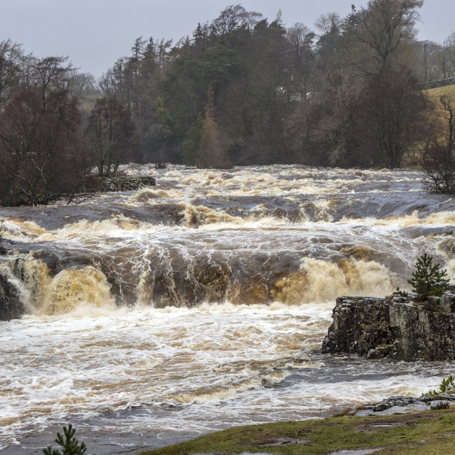 """The River Tees at Low Force in Flood Conditions, Upper Teesdale,"" stock image"