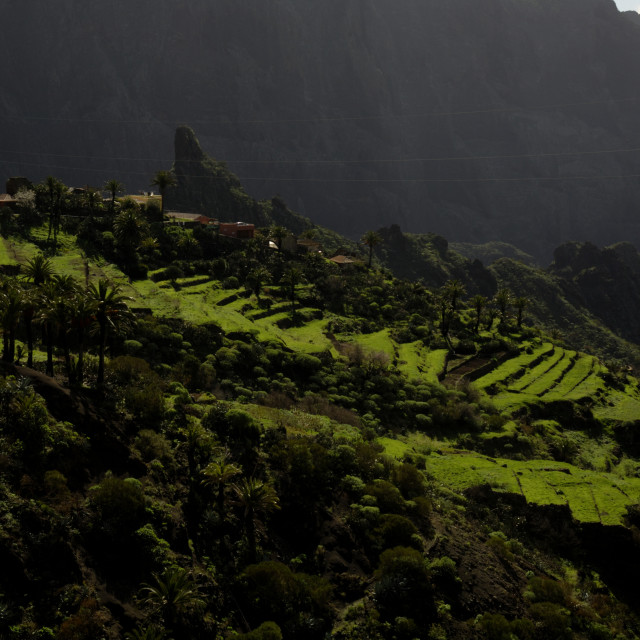 """""""Country side at Masca Tenerife,"""" stock image"""