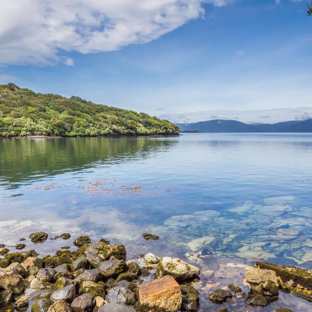 """Halfmoon Bay, South Island, New Zealand"" stock image"