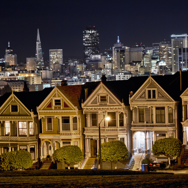 """Painted Ladies"" stock image"
