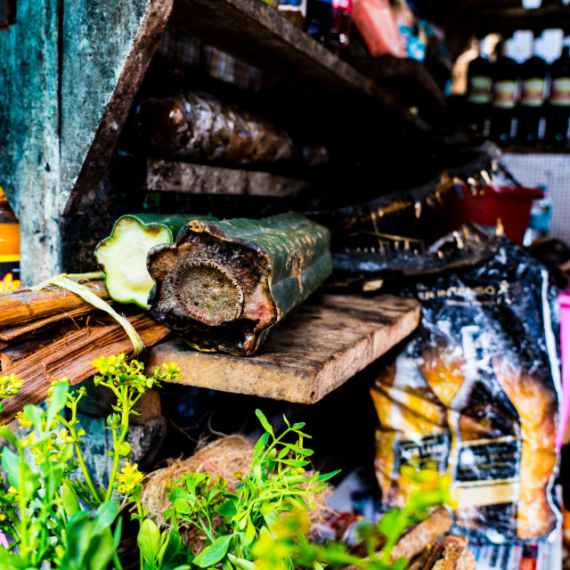 """San Pedro Cactus as sold in Peruvian market, in Iquitos, Peru"" stock image"