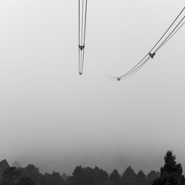 """""""Lines into mist"""" stock image"""