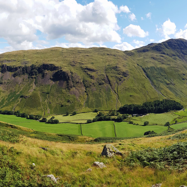 """""""Grisedale Valley - Patterdale"""" stock image"""