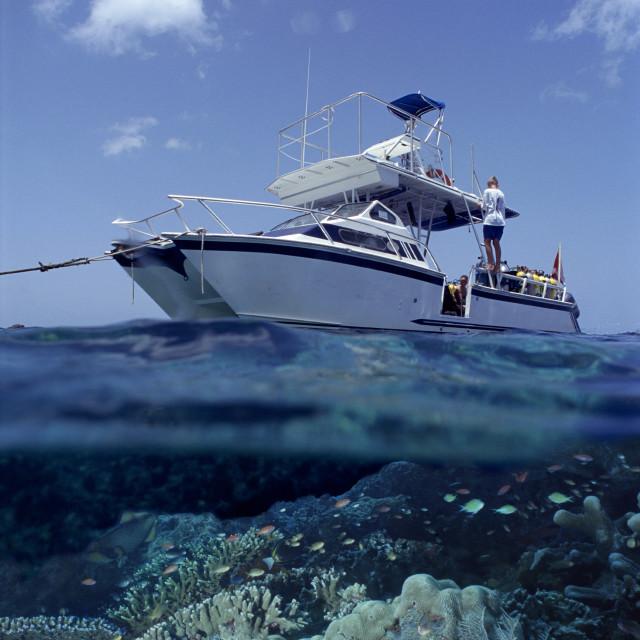 """Dive boat, Dominica"" stock image"