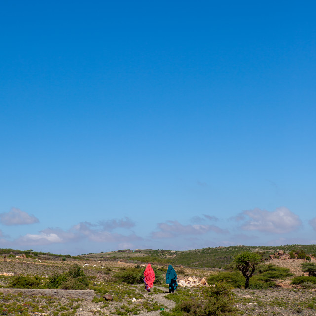 """Somali women in sheikh mountains, Togdheer, Sheikh, Somaliland"" stock image"