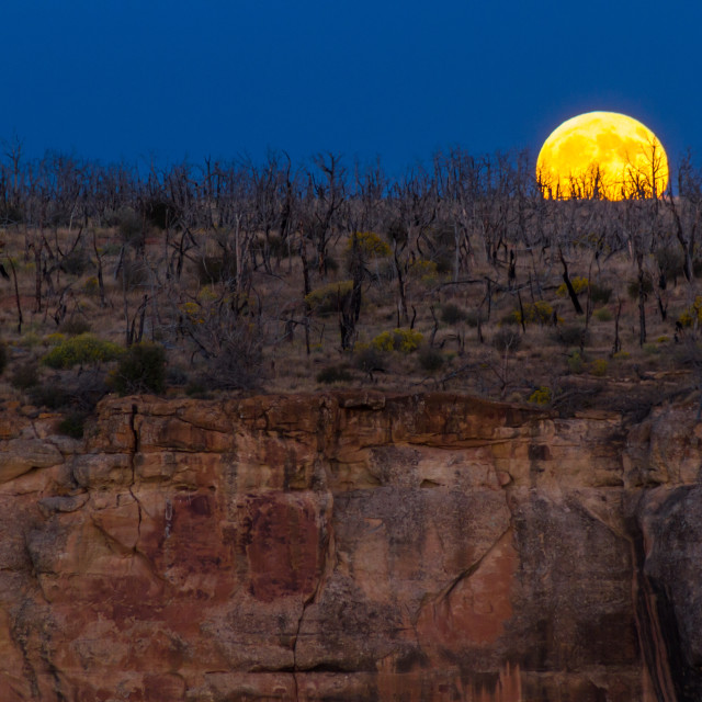 """Full moon rising over Mesa Verde"" stock image"