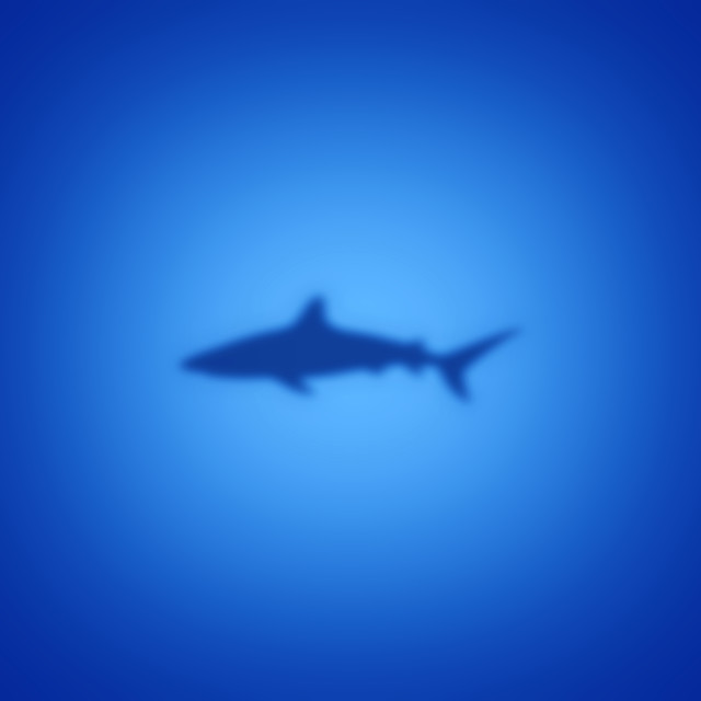 """Shark silhouette on blue"" stock image"