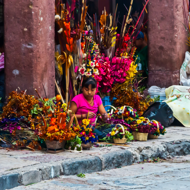 """""""Mexican Girl Selling Artificial Flowers"""" stock image"""