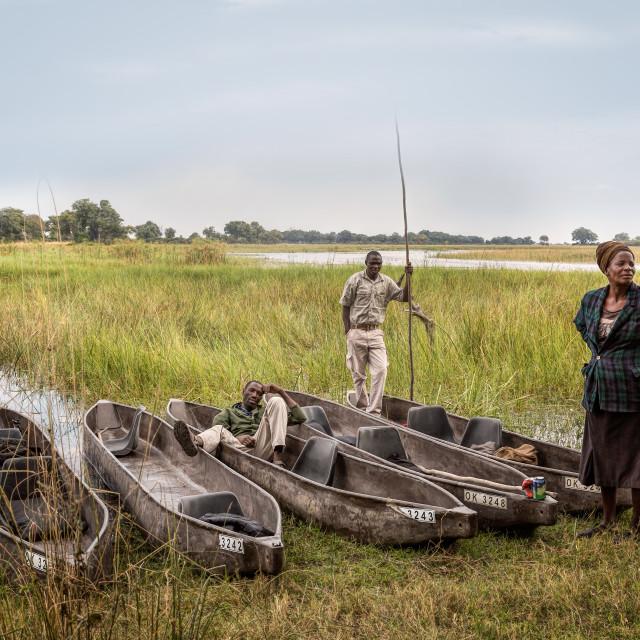 """""""Botswana Polers"""" stock image"""