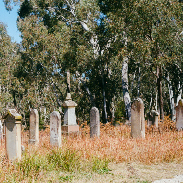"""Historic Mount York Cemetery, Hartley Vale"" stock image"