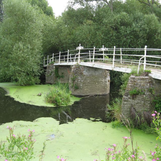 """Bridge over the river"" stock image"