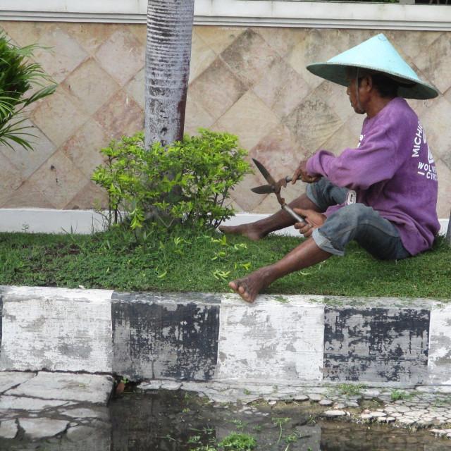 """Oriental gardener"" stock image"
