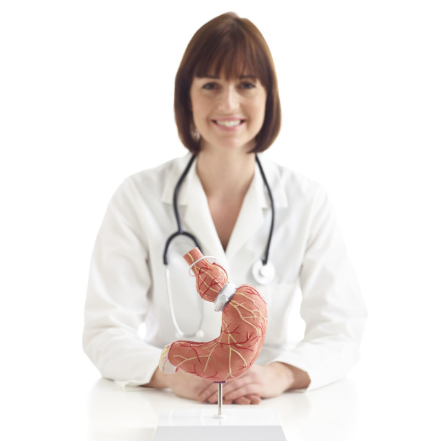 """Doctor with model of stomach with gastric band"" stock image"