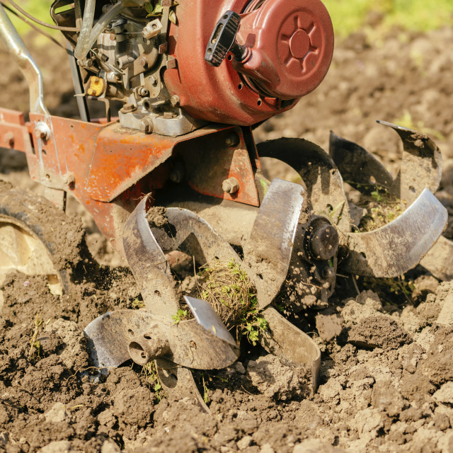 """Preparing garden soil with cultivator"" stock image"