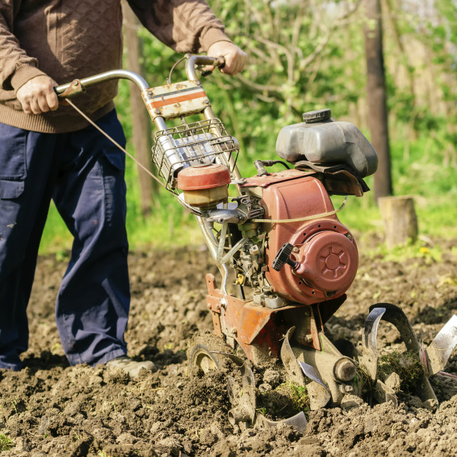 """Man preparing garden soil with cultivator"" stock image"