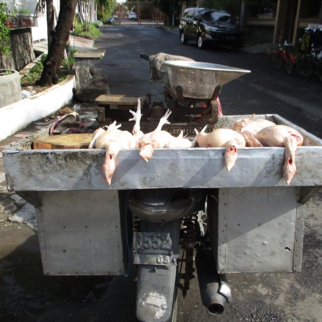"""Mobile chicken shop, Java"" stock image"