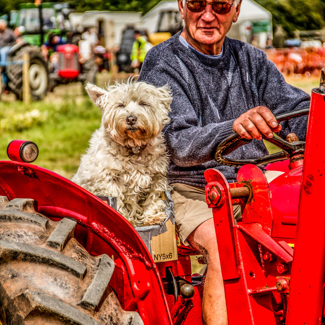 """Tractor Friends"" stock image"
