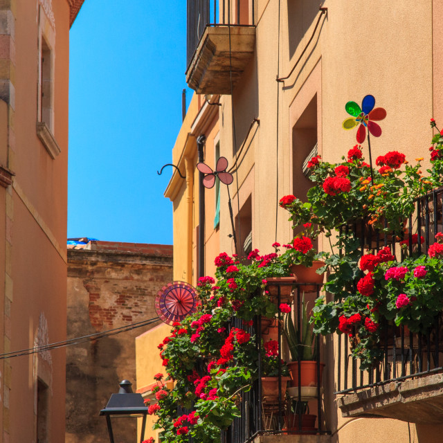 """Bright flowers and plants on balconies in the old town of Tarrag"" stock image"