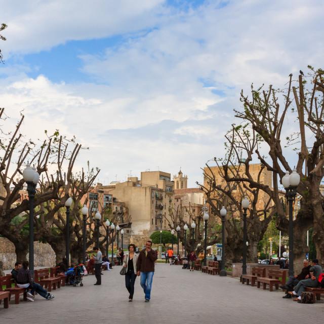 """""""Passeig de les Palmeres (Paseo de las Palmeras), Tarragona, Cata"""" stock image"""