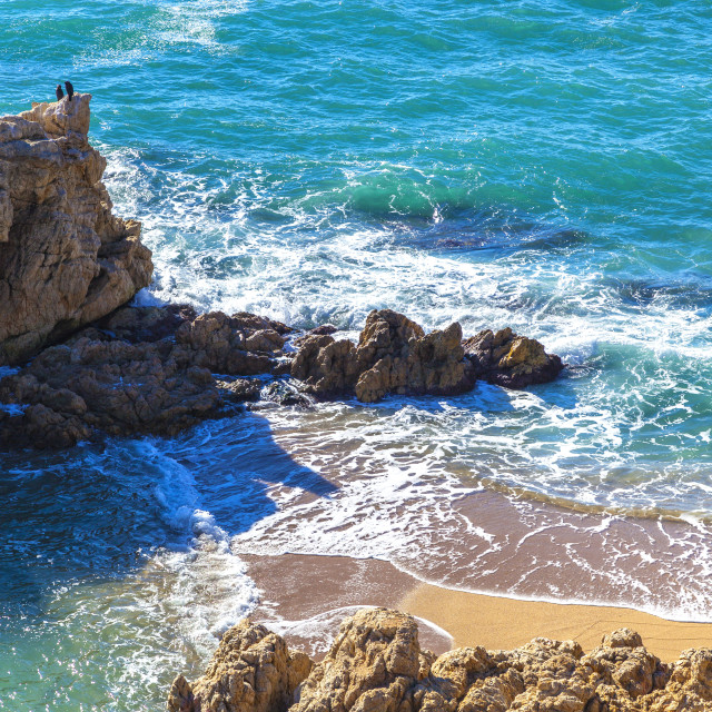 """""""Idyllic beach with tuquoise sea and golden beach. Cormorant birds on the rock."""" stock image"""