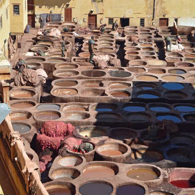 """Moroccan Tannery"" stock image"