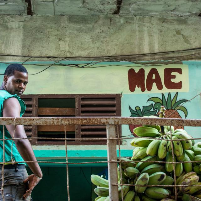 """Cuba and bananas"" stock image"