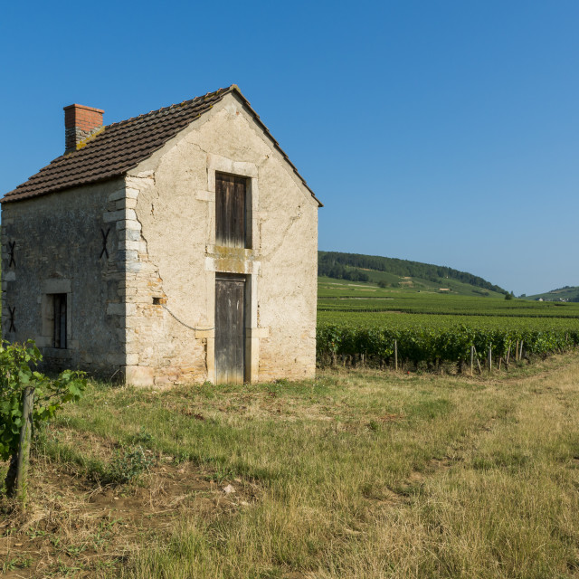 """Vineyard House in Beaune"" stock image"