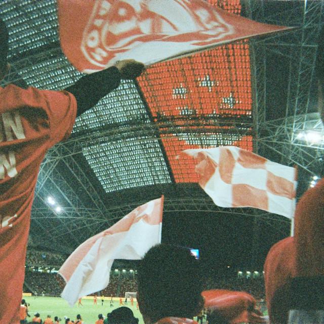"""Singapore fans"" stock image"