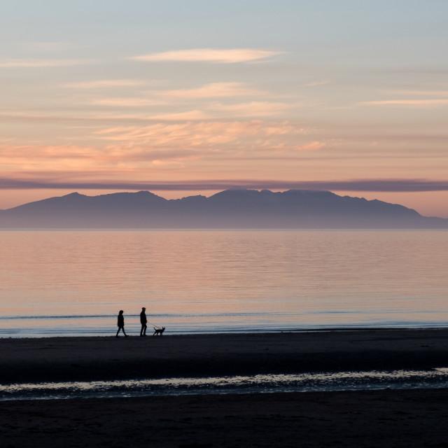 """""""Dog walking at sunset on the west coast of Scotland"""" stock image"""