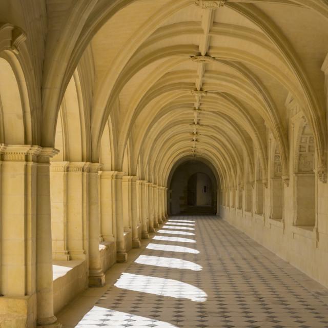 """Church of Fontevraud Gallery"" stock image"