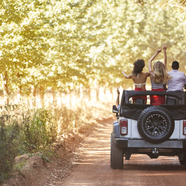"""""""Friends standing in an open top jeep, back view"""" stock image"""