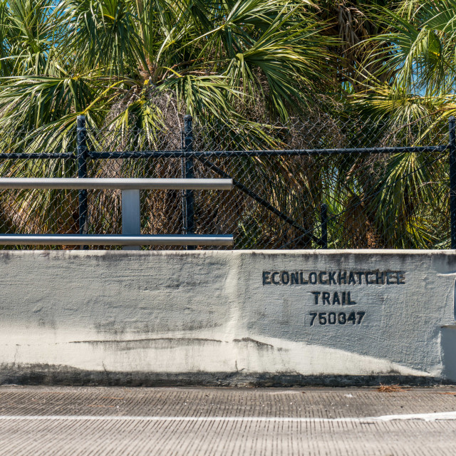 """""""Econlockhatchee Trail. Bridge over the 417. Orlando area highway and toll road 417 looking North bound. Midday traffic. Sunny spring day in Central Florida."""" stock image"""