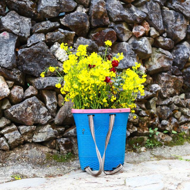 """Yellow cabbage flower bamboo basket"" stock image"