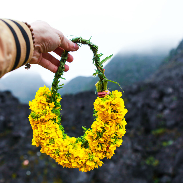 """""""Garlands, laurel wreaths are made of reform flowers and buckwheat flowers in Ha Giang"""" stock image"""