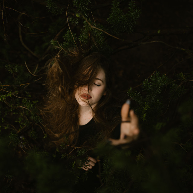 """Young Woman With Hair Tangled in a Tree"" stock image"