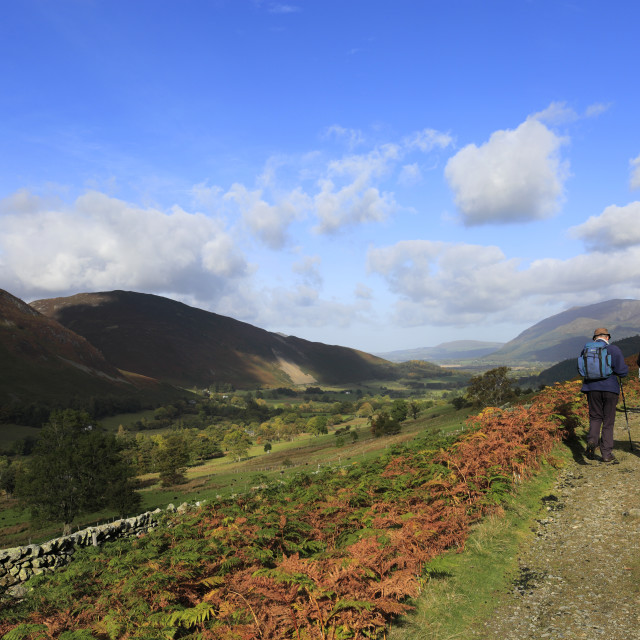 """""""Walkers in the Newlands Valley, Allerdale, Lake District National Park,..."""" stock image"""