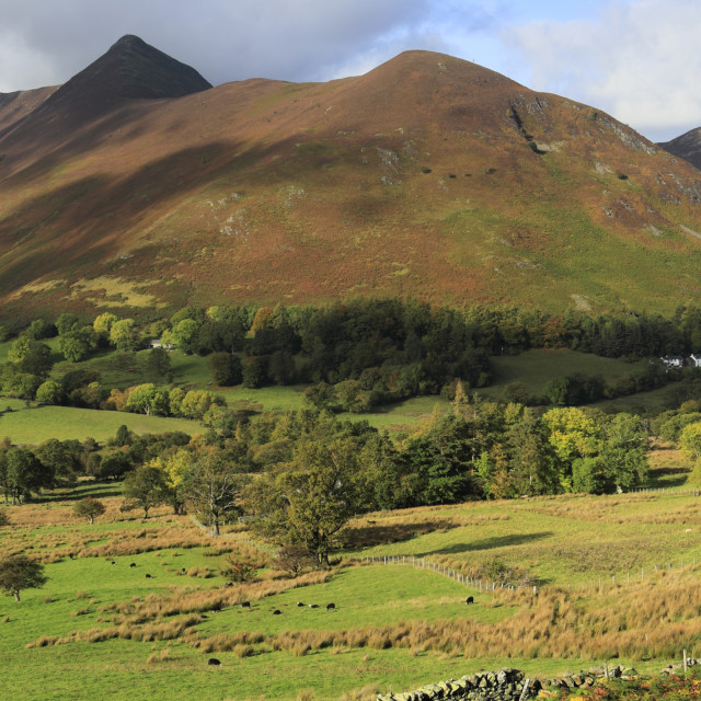 """""""Autumn view through the Newlands Valley, Allerdale, Lake District National..."""" stock image"""