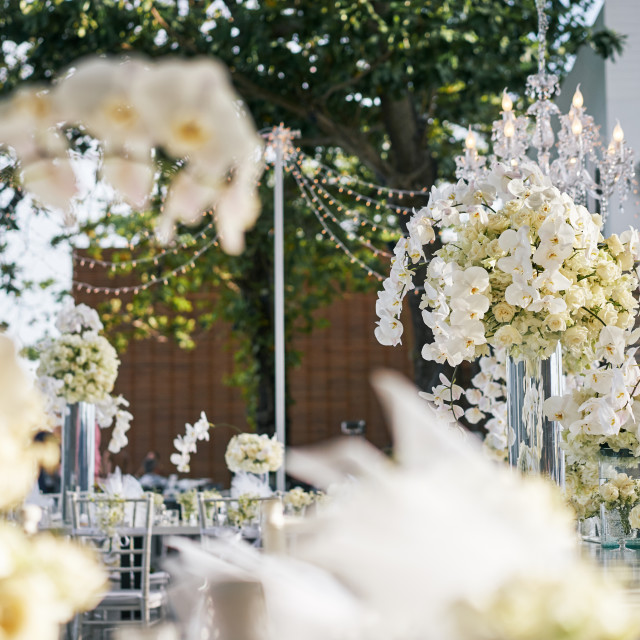 """""""White roses, flower, floral decoration on thewedding reception dinner table"""" stock image"""