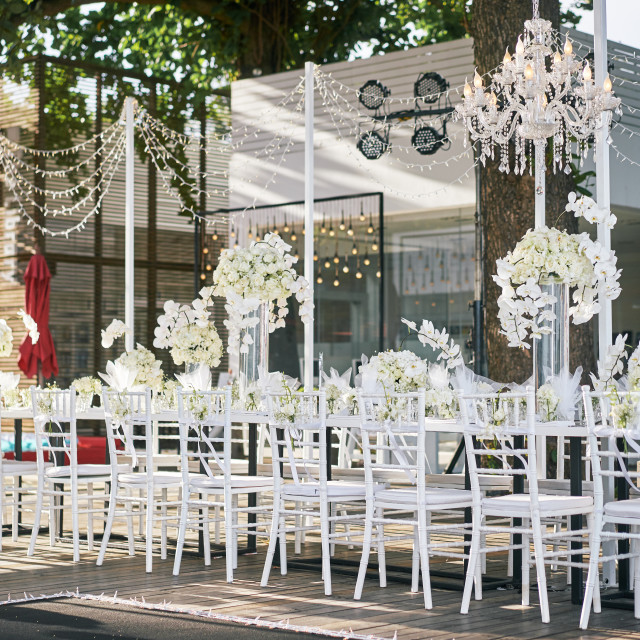 """""""Wedding reception dinner table setting with a lot of white roses, flower, floral decoration"""" stock image"""
