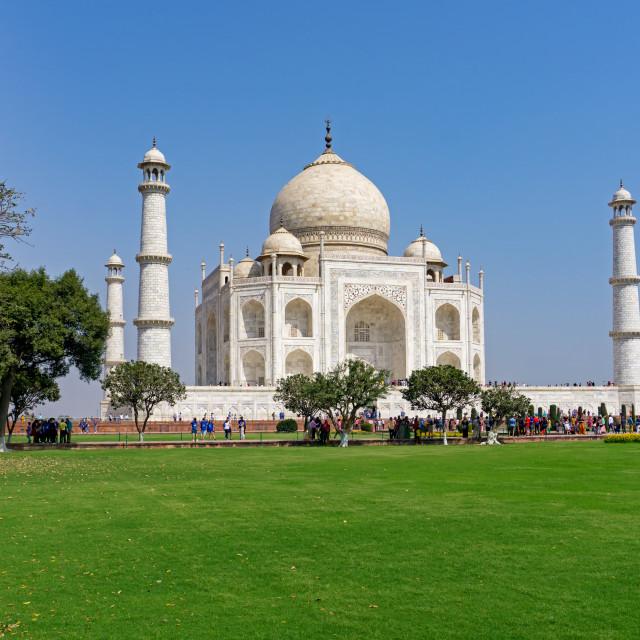 """""""View of Taj mahal"""" stock image"""